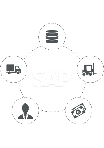 SAP Development